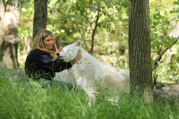 Becky Wolf 3