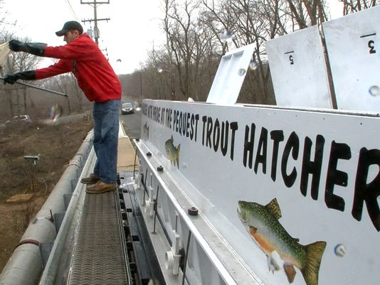 About 625,000 trout are stocked into N.J. bodies of water every year. (NJ Press Media file photo)