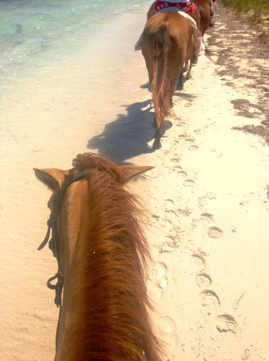 Many tourists take to horseback to check out the beach in a new light.  (Photography Jenna Intersimone)