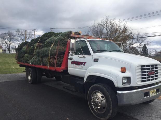 Everitt Farms offer a tree delivery service.  ~Courtesy of Everitt Farms