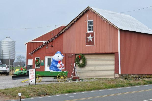 Everitt Farms is ready for the holiday season.  ~Courtesy of Everitt Farms
